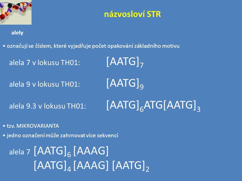 názvosloví STR alela 7 v lokusu TH01: [AATG]7